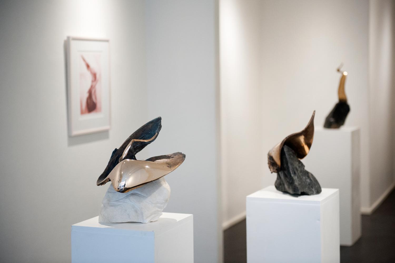 Laila Pullisen muistonäyttely noteerattiin Ylen televisio-uutisissa. Taiteilijan viimeisistä grafiikkatöistä ja veistoksista kootun näyttelyn kuratoi hänen poikansa Jean Ramsay.